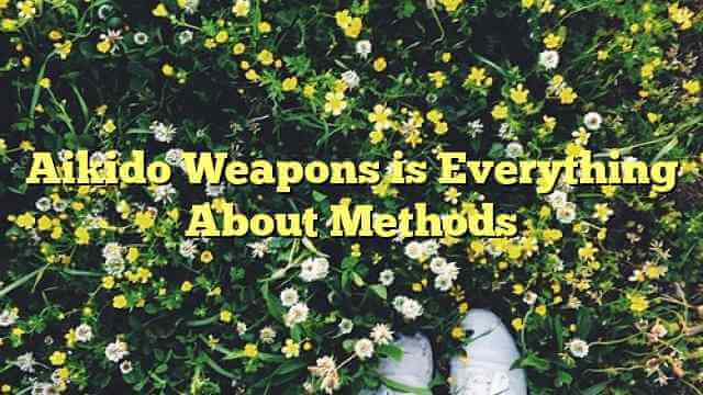 Aikido Weapons is Everything About Methods